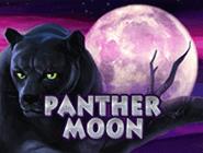 Слот Panther Moon в Вулкане
